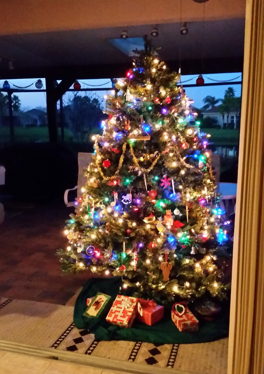 How my tree looks on the patio in Florida.
