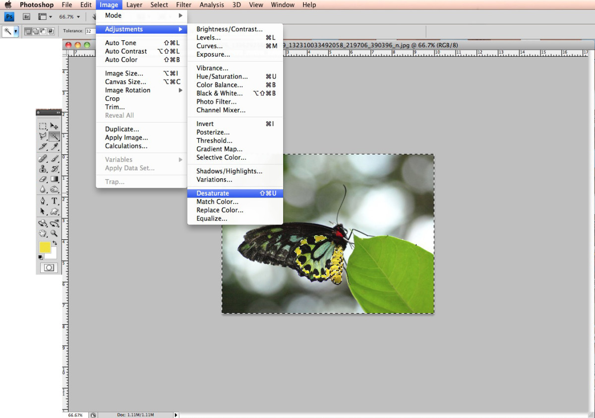how-to-pull-out-specific-colors-in-photographs-using-adobe-photoshop