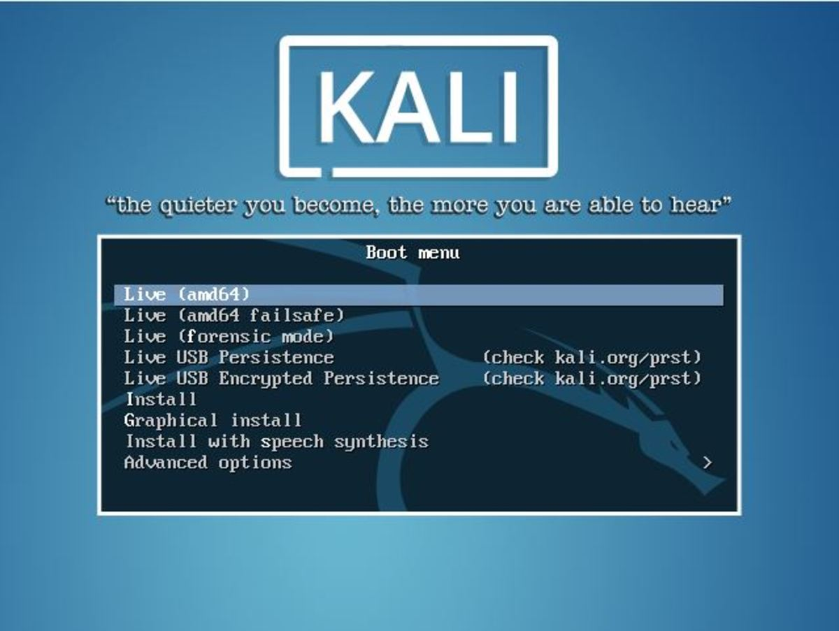 How to Run Kali Linux From a Bootable USB Drive | TurboFuture