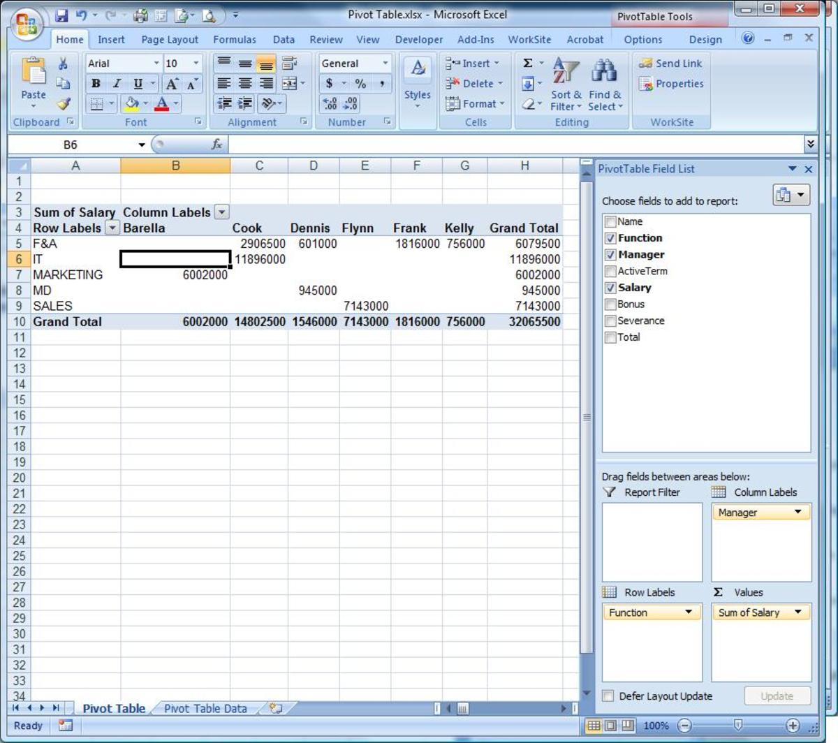 The template for the Pivot Table with the field list items pulled from your data.