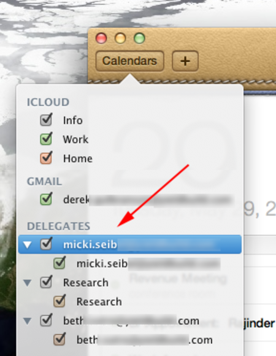 Once you set it up, seeing your coworker's calendars in iCal is easy too.
