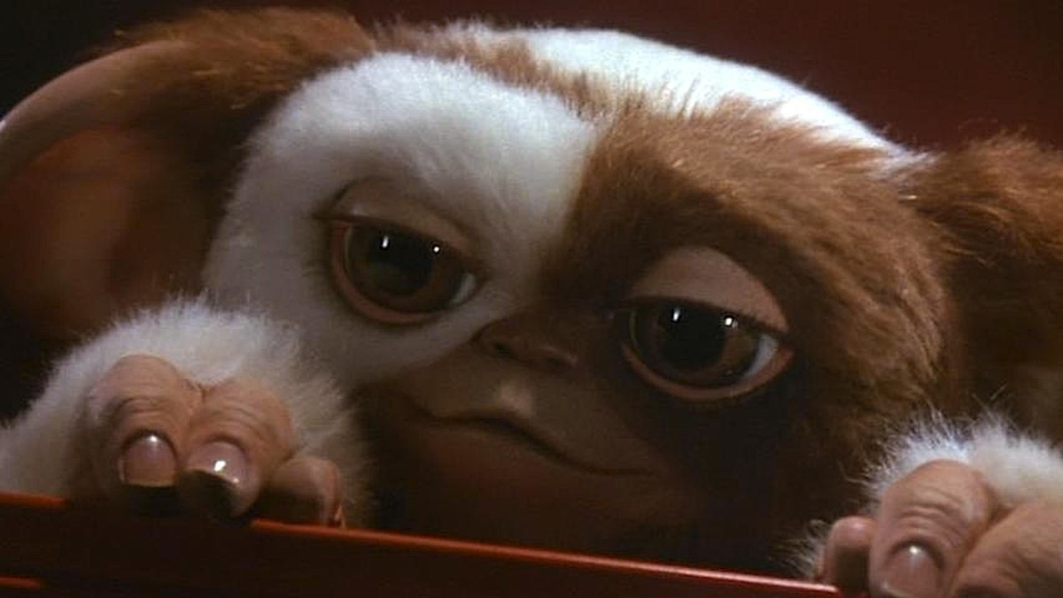 Gizmo is the star of the film, easily winning you over with his cute appearance and exceptional puppetry. Where can I get one?