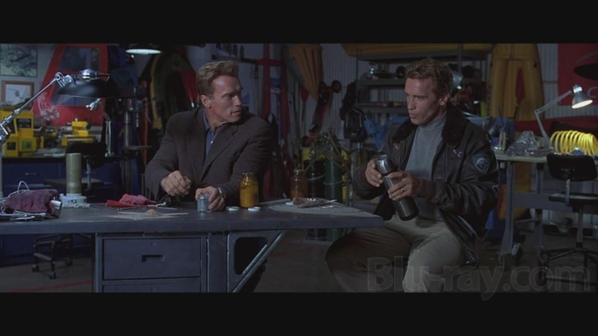 Schwarzenegger x 2