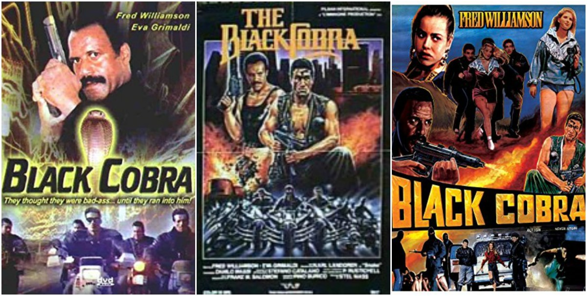"Due to its Public Domain status, ""Black Cobra"" has been released by dozens of DVD labels with different covers."