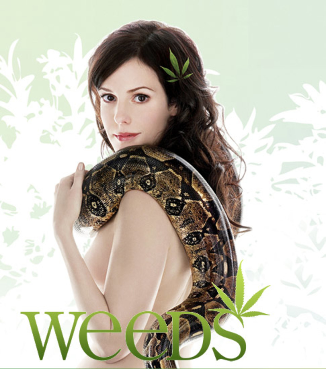 Weeds is a dark comedy-drama series about a widow who starts selling pot in order to support her family.