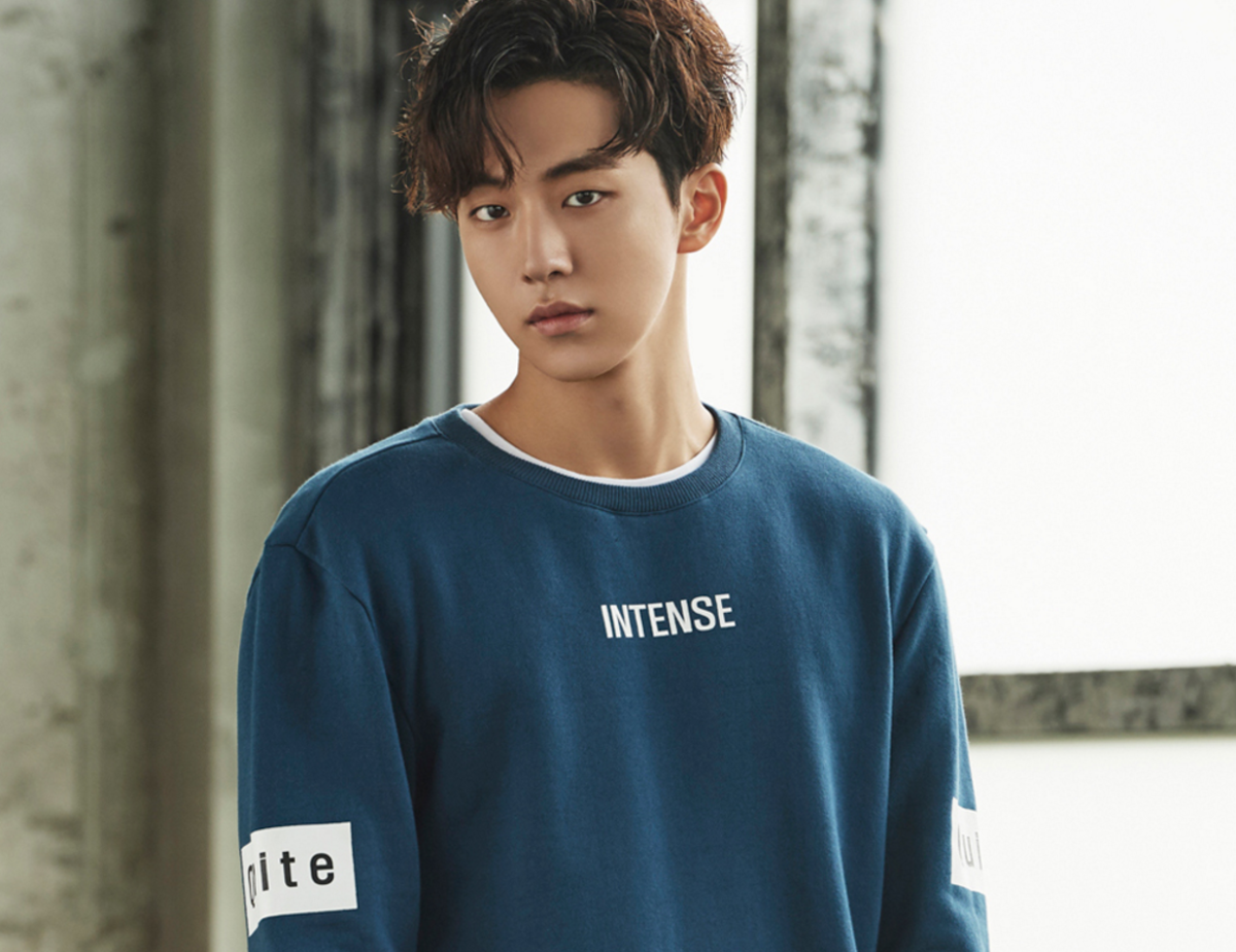 Nam Joo Hyuk | Top 10 Most Popular and Handsome Korean Drama Actors