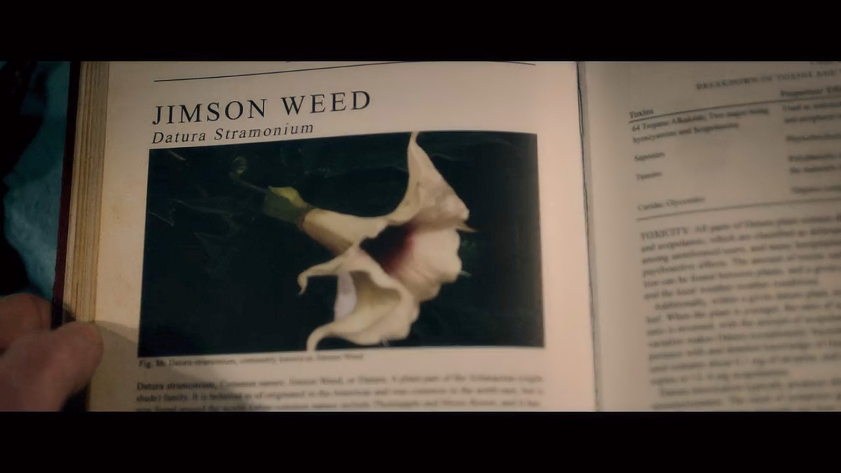 A little investigating leads Tommy to a flower, Jimson Weed, during his evaluation in 'The Autopsy of Jane Doe' (2016).