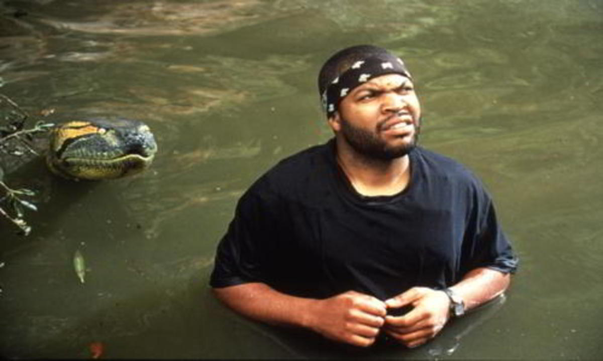 Ice Cube's date night with the snake included gazing longingly at the stars...