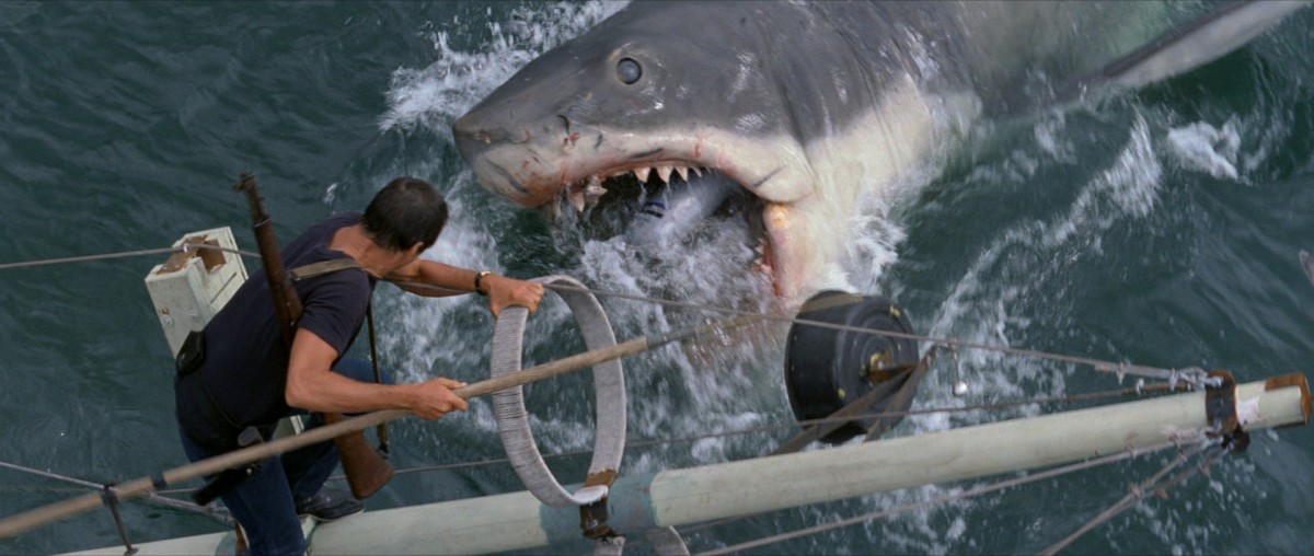 Only with hindsight does the shark look fake - watching it, you buy into the concept completely.