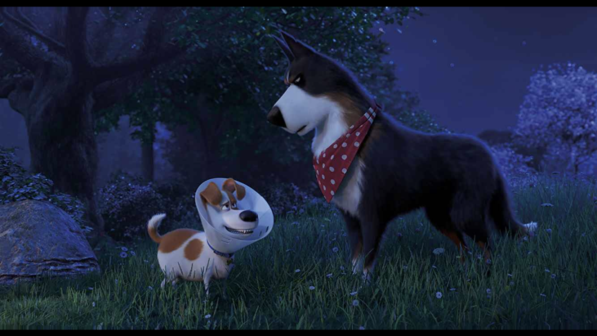 movie-review-the-secret-life-of-pets-2