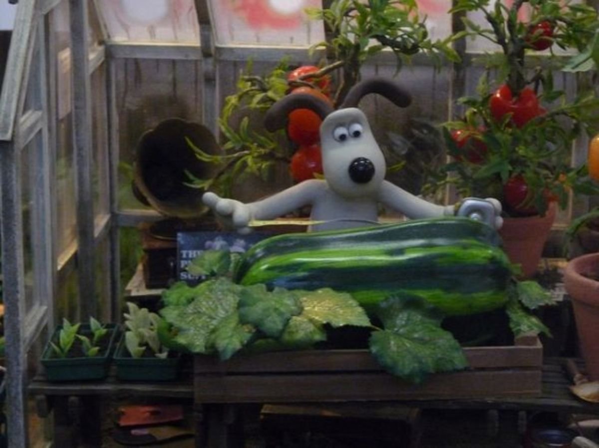 Photo of the Wallace and Gromit garden set taken at the Wallace & Gromit Exhibition at the Science Museum in 2009