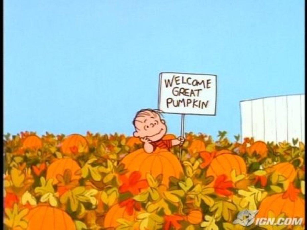 Linus in pumpkin patch