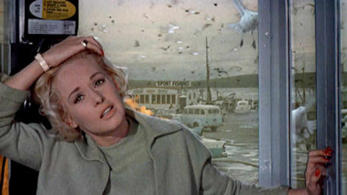 Tippi Hedren in 'The Birds'