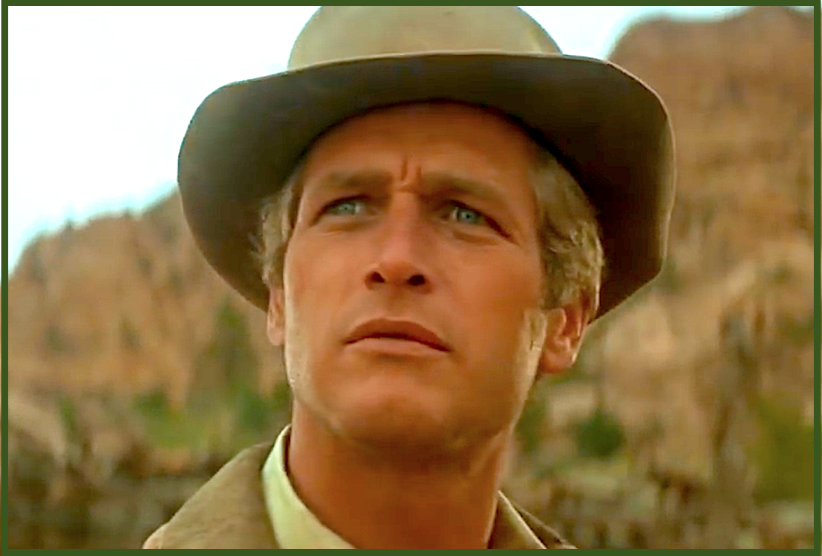 In the 1960s Paul Newman was one of Hollywood's biggest sex symbols.