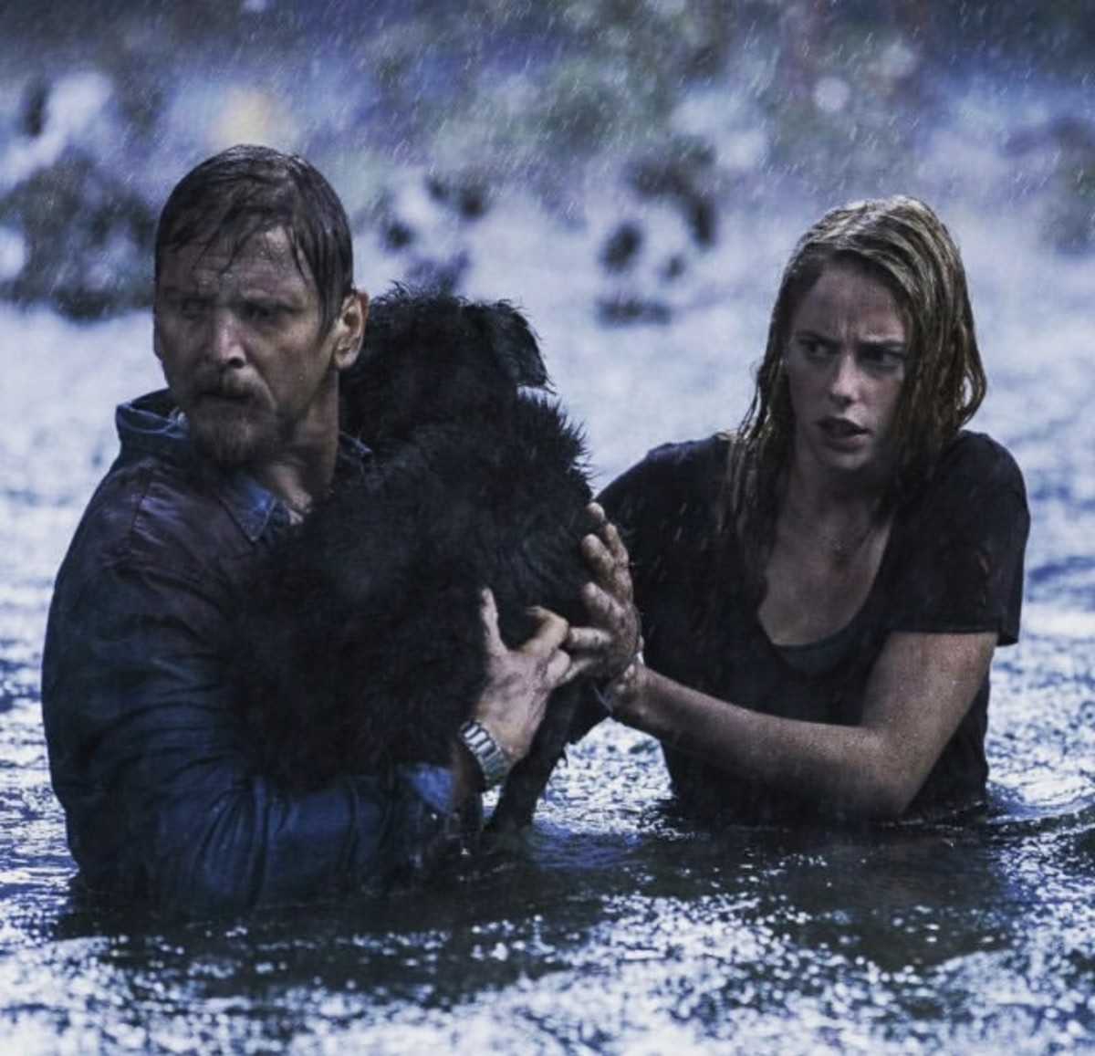 crawl-2019-review