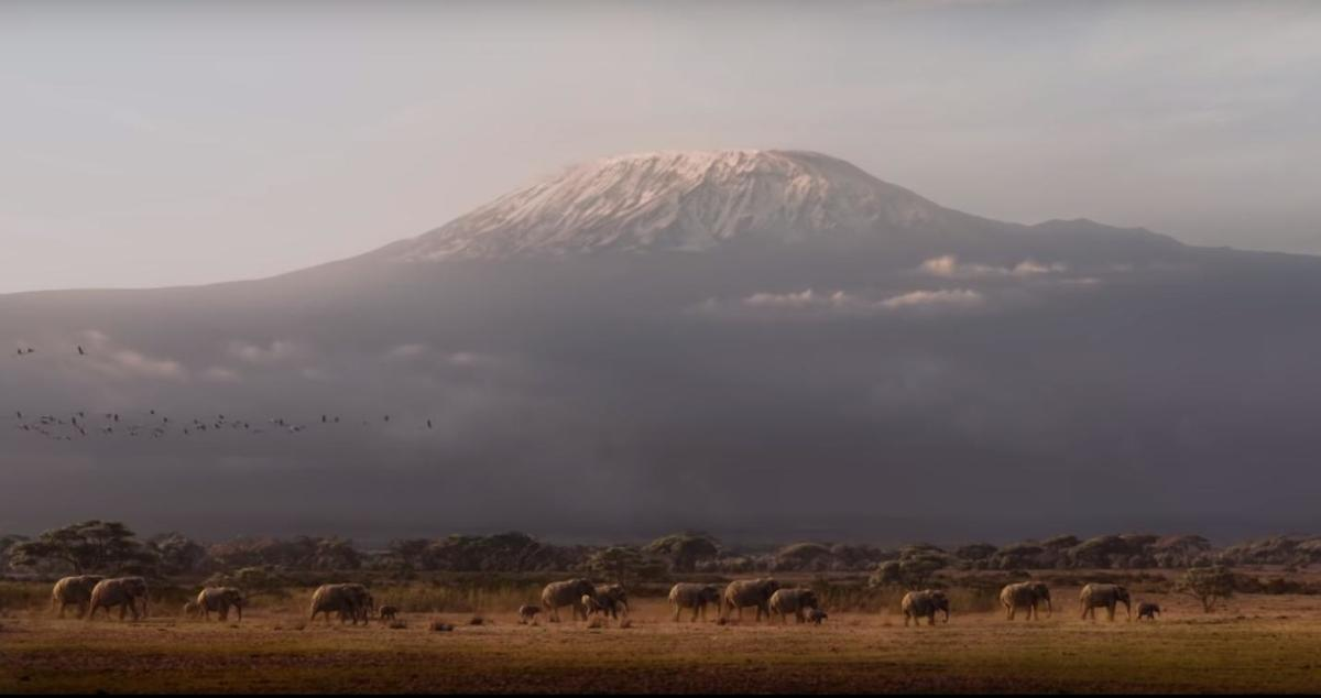 Extremely solid CGI capturing what can already be seen on National Geographic.