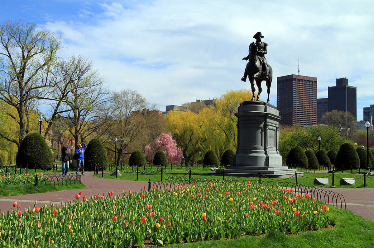 Beautiful in the springtime, Boston Common and the Public Garden also put on a stunning display of fall foliage every October.