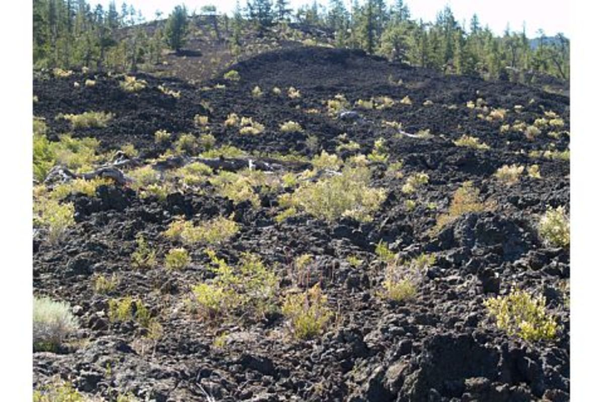 A snapshot of the Central Oregon lava flows (it hardly shows the magnitude of the flow)