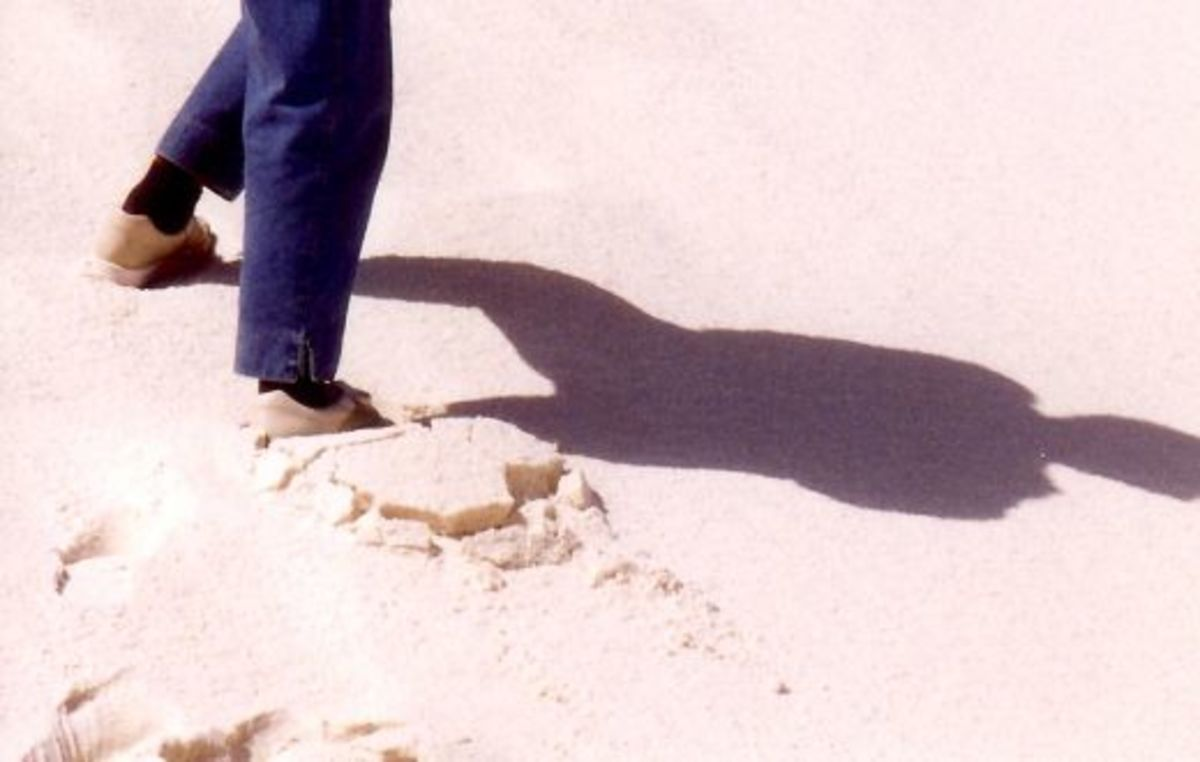 Shadows in the white sand
