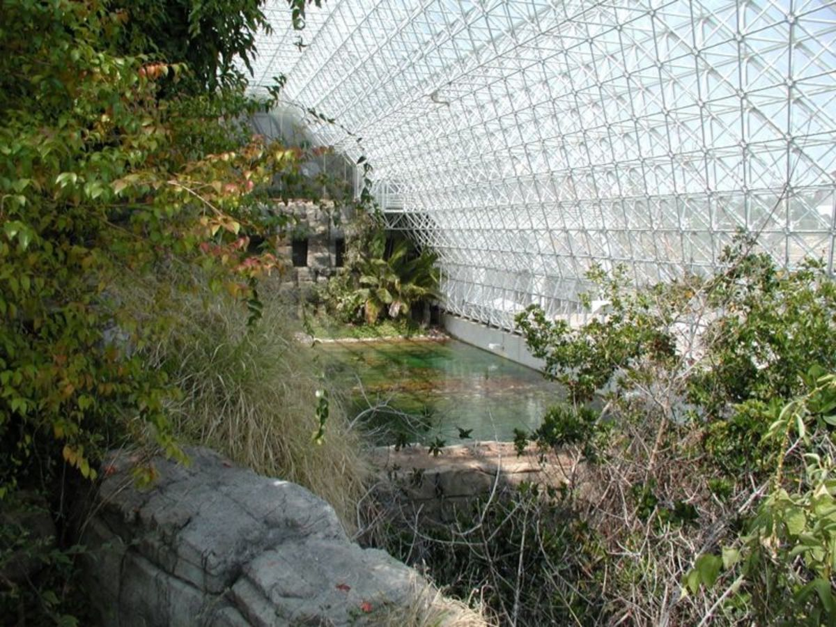 A View of the Ocean in Biosphere 2