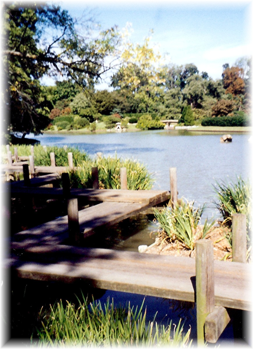 The Japanese Garden - St. Louis Botanical Gardens