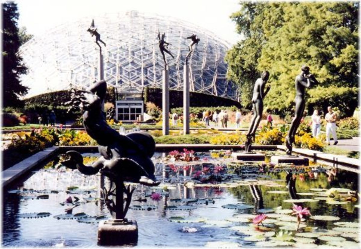 Sculptures and water lilies in reflection pool near the Climatron in Missouri Botanical Garden