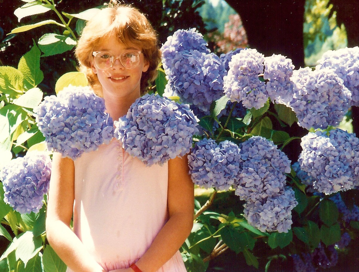 My beautiful niece with the amazingly bountiful hydrangeas in bloom on the grounds of the Capilano Suspension Bridge Park