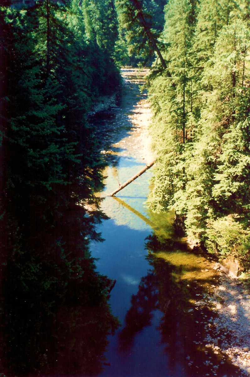 View looking down on the river from the bridge