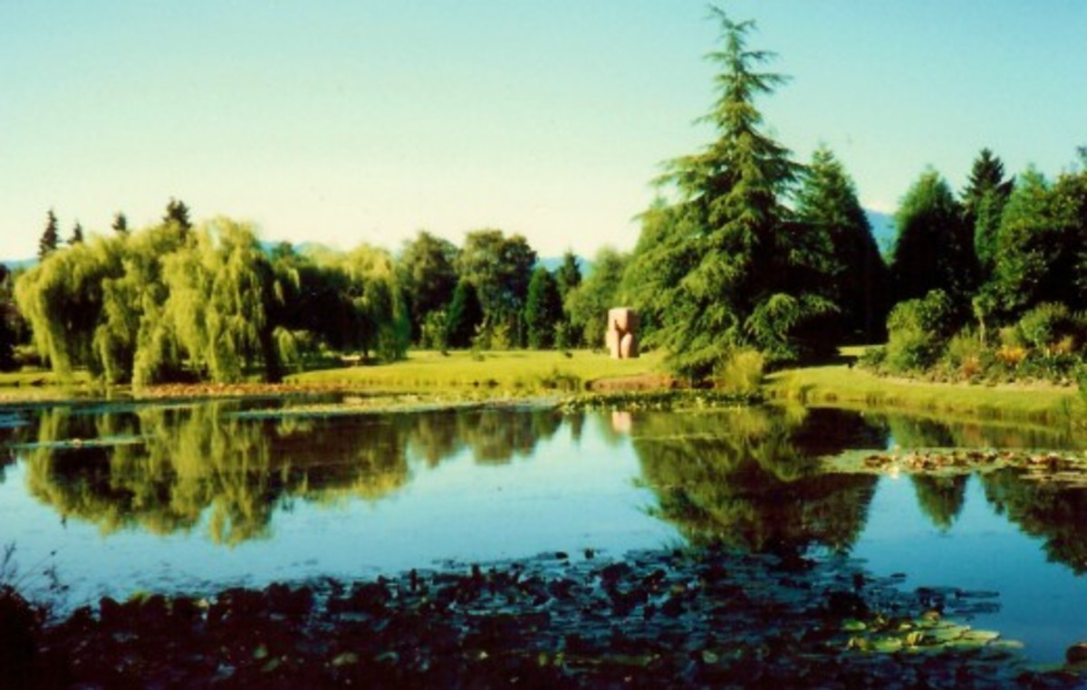 Sculpture viewed from afar in the VanDusen Botanical Garden