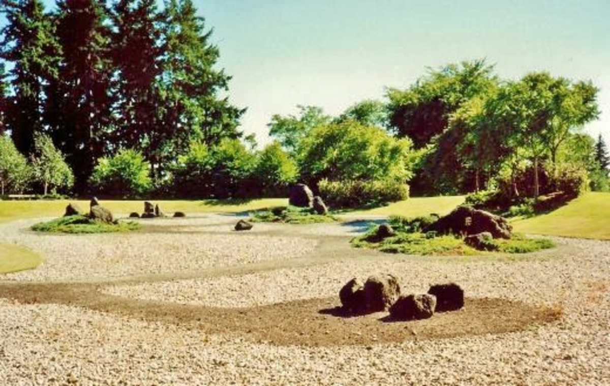 Dry Oriental garden design