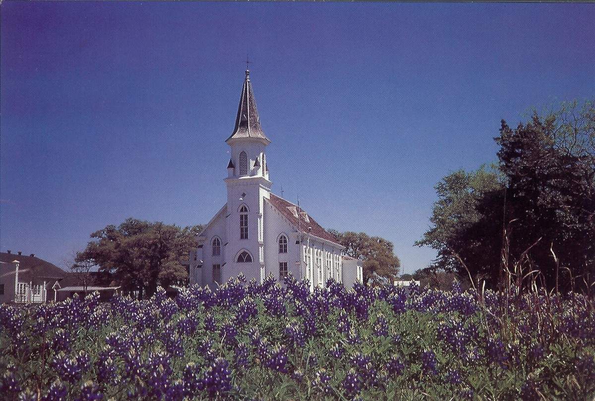 On back of postcard - Sts. Cyril and Methodius Catholic Church - Dubina. TX. Bluebonnets in the springtime at Dubina: the oldest Czech settlement in Texas.  The church interior is decorated throughout with frescoes and stenciling in vivid colors comm