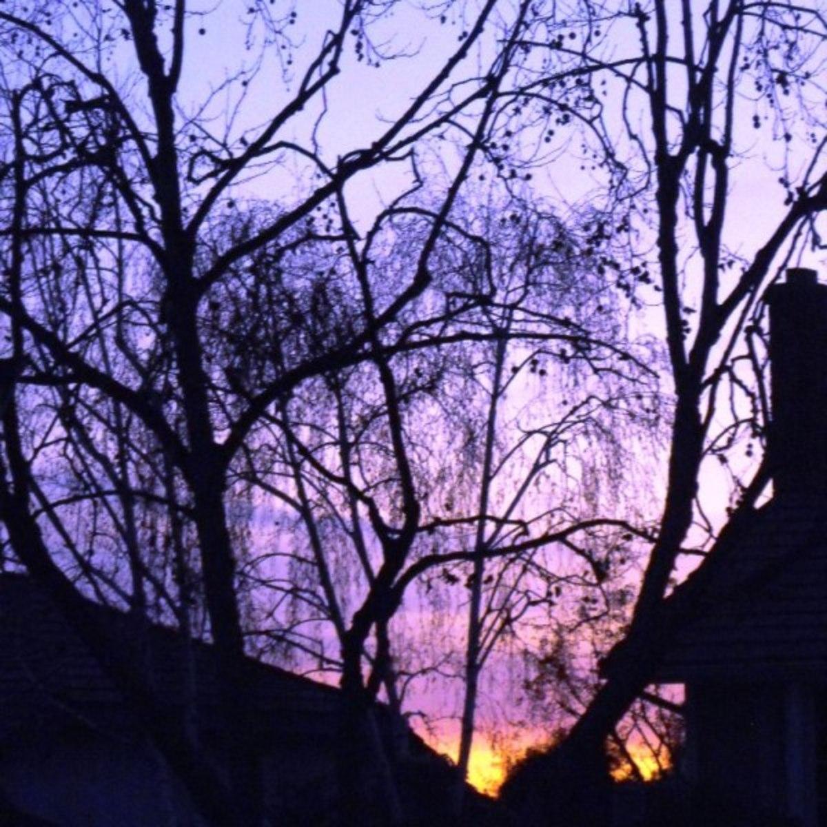 Winter Sunset in La Verne, CA