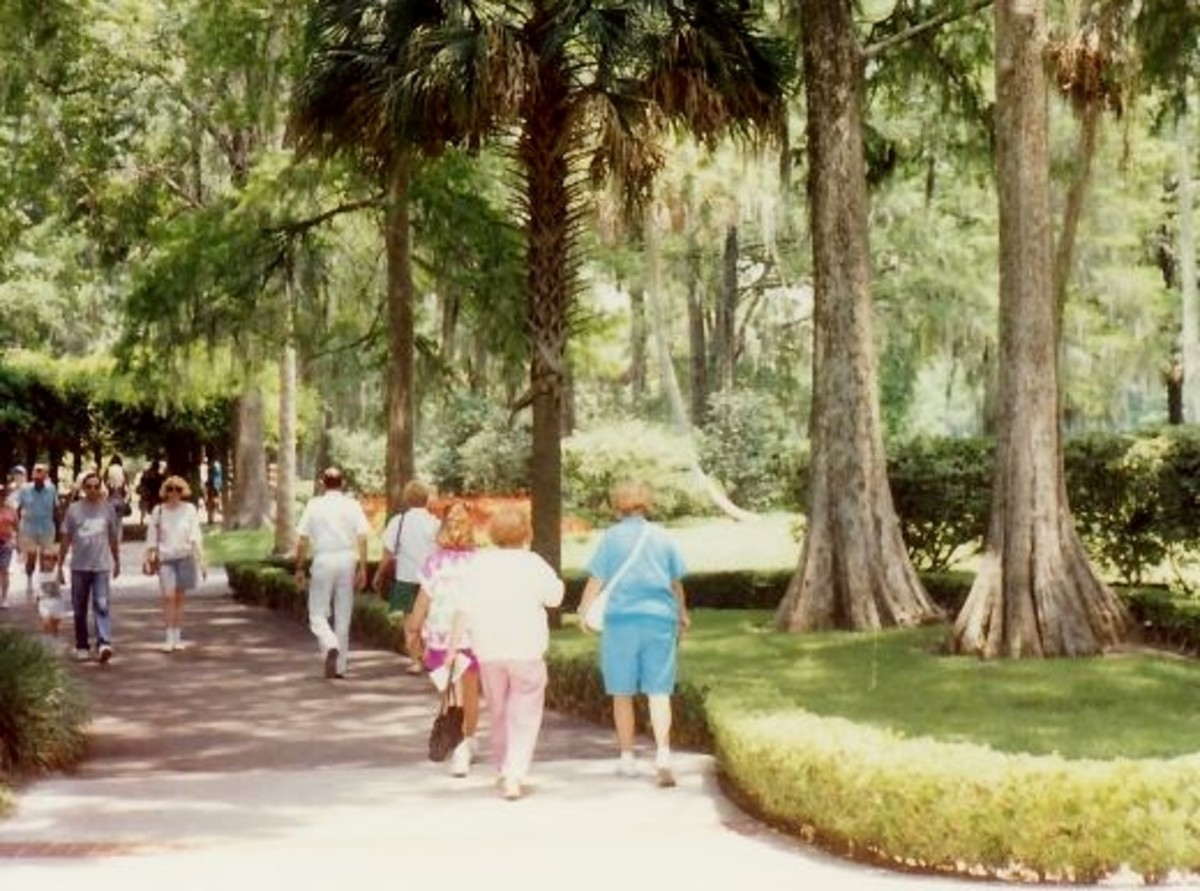 Walking onto the grounds at Silver Springs, Florida