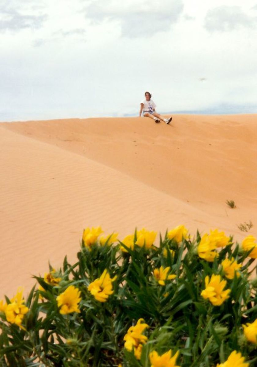Sitting on top of a pink world at the Coral Pink Sand Dunes State Park in Utah.