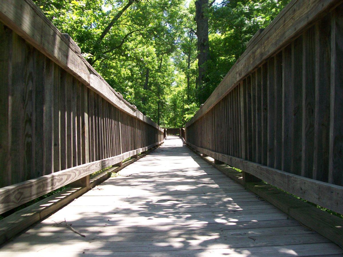 Cussetah Bottoms Boardwalk Trail