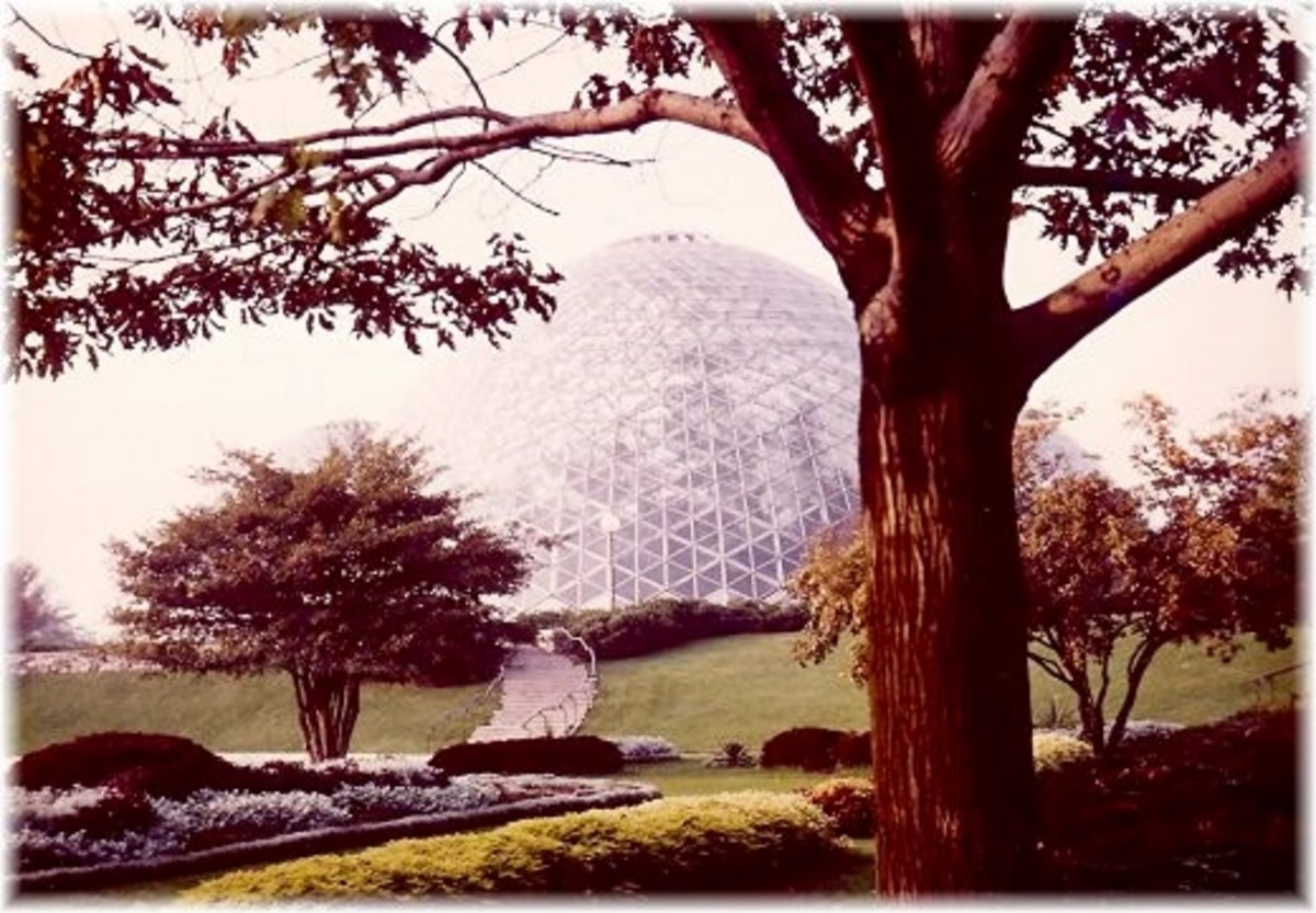 Another outside view of one of the domes and landscaping outside of the Mitchell Park Domes.
