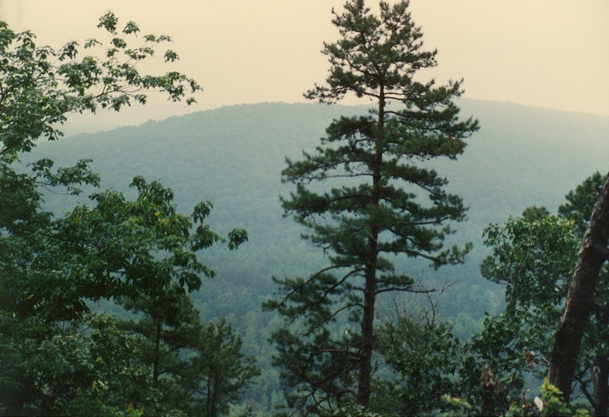 The ancient Uwharrie Mountains from Morrow Mountain State Park.