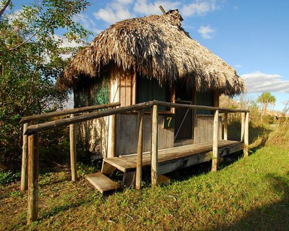 Tourist Attractions In Florida South Florida Nature