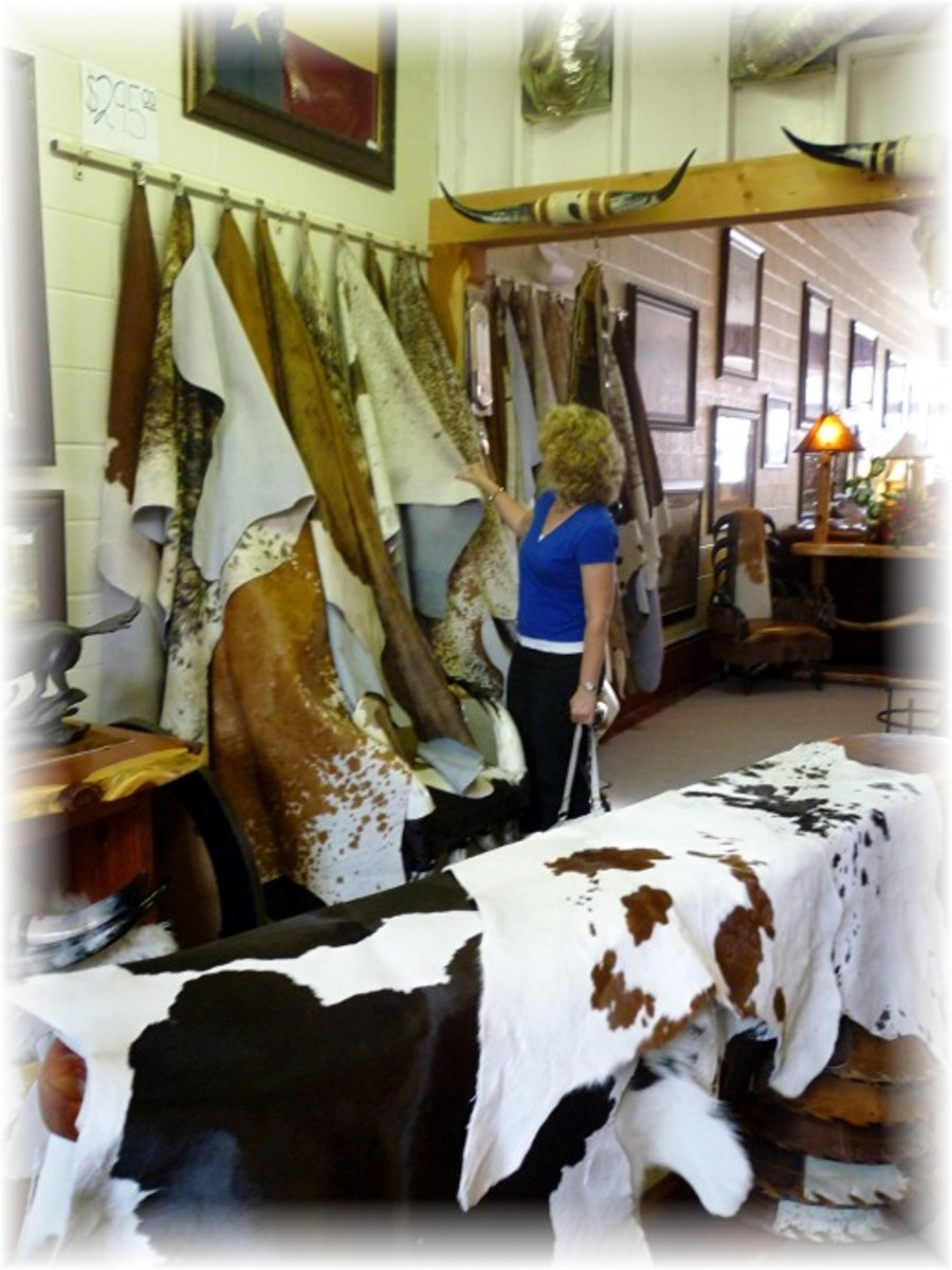 Lisa admiring the cowhides