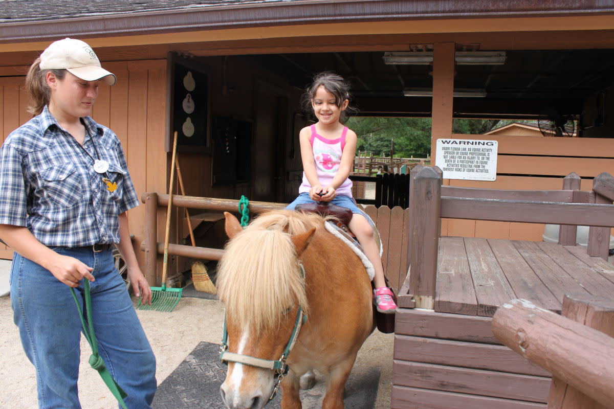 Pony rides are only $5!