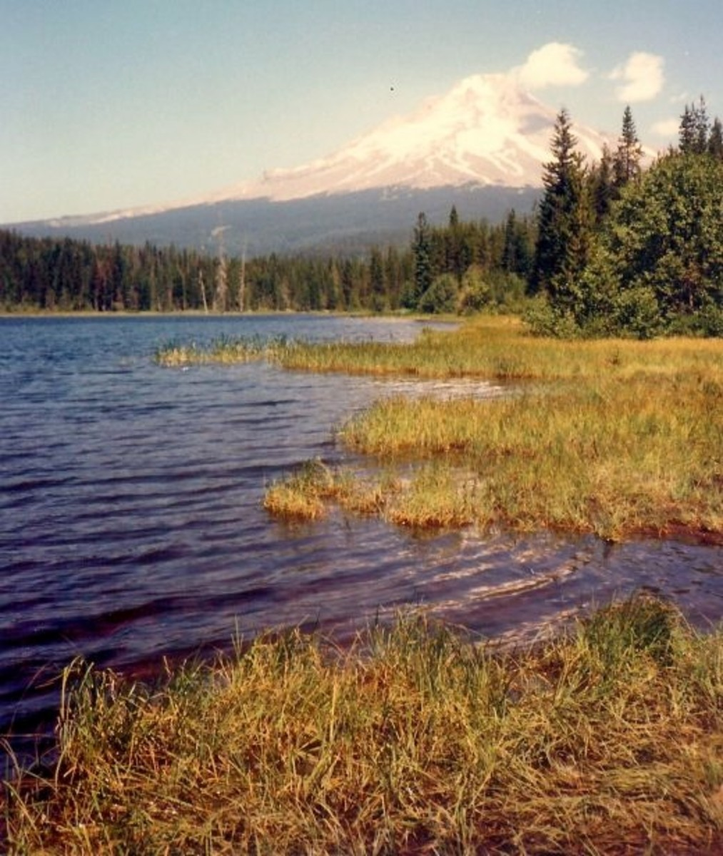 Trillium Lake with Mount Hood in the background