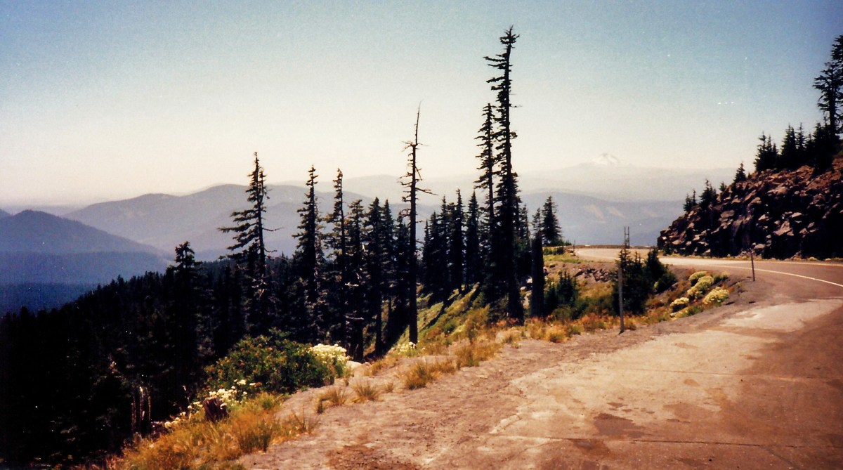 Scenery as the road up to Timberline Lodge rises in elevation