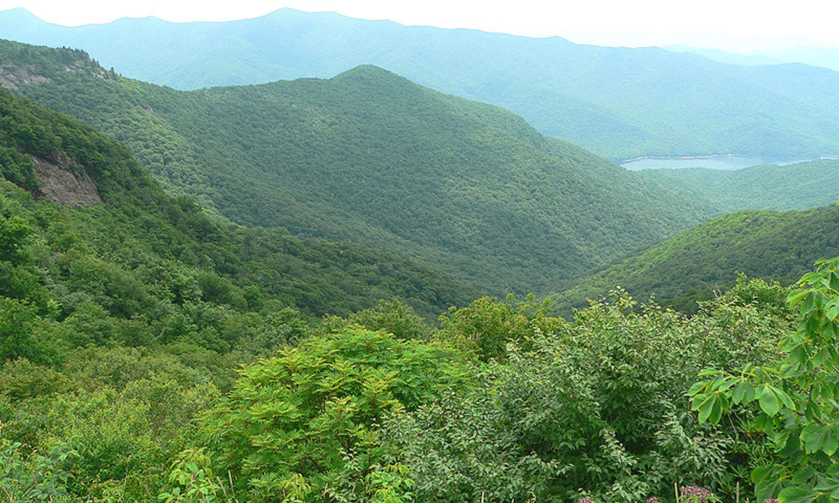 Craggy Gardens, located along the Blue Ridge Parkway