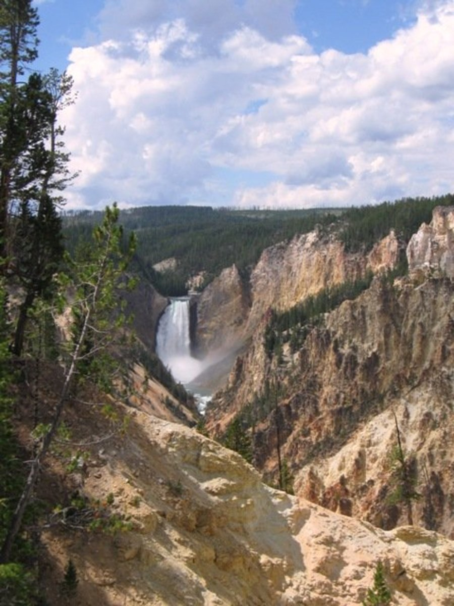 The Grand Canyon of Yellowstone—a distant view of the falls.