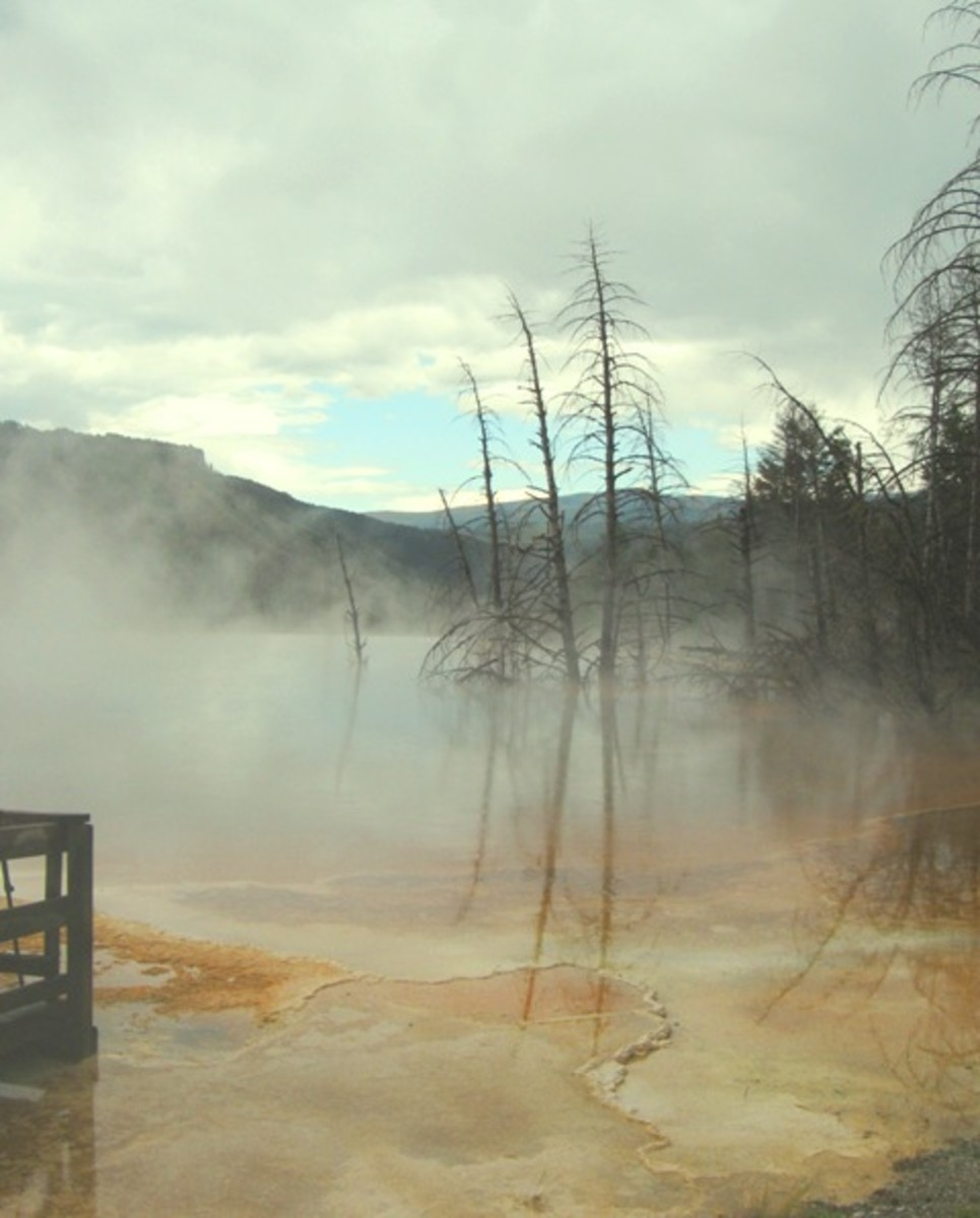 Midway Geyser Basin and Grand Prismatic Spring in the Morning