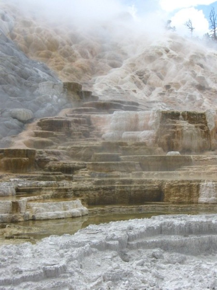 Mammoth Hot Springs in the Rain