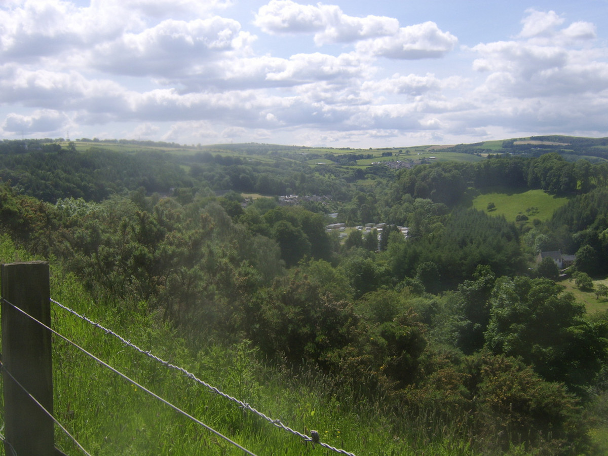 The Clyde Valley, Nr Lanark