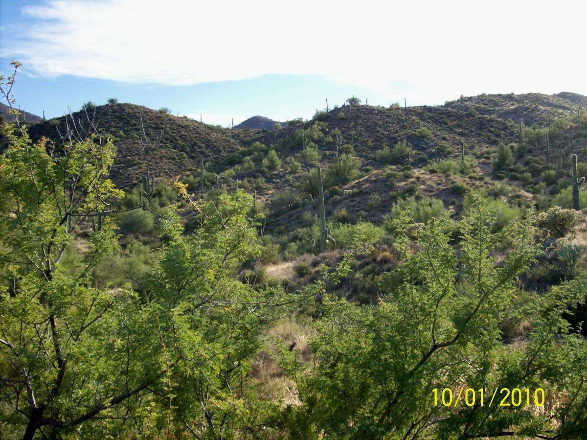 Rugged hills near Gonzales Pass