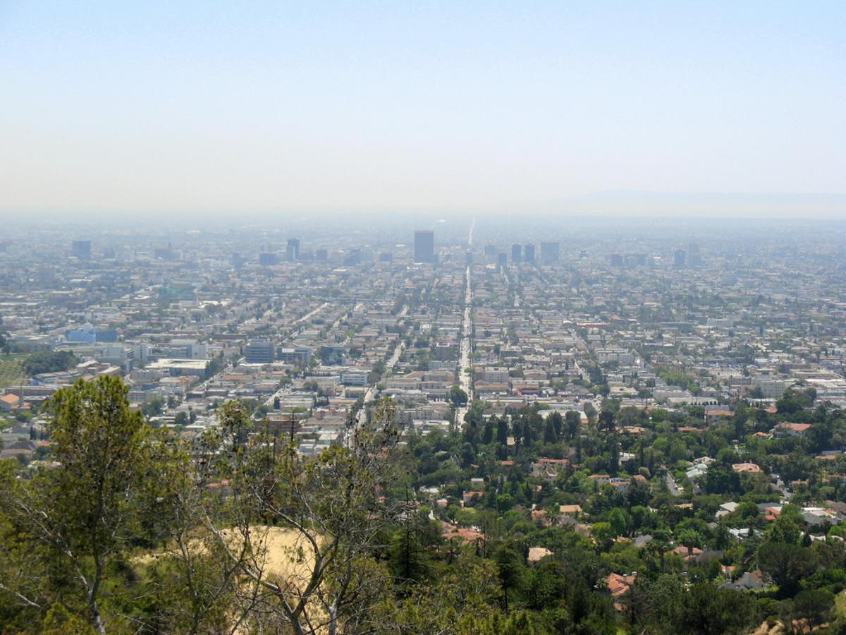 The Los Angeles skyline from Griffith Park.