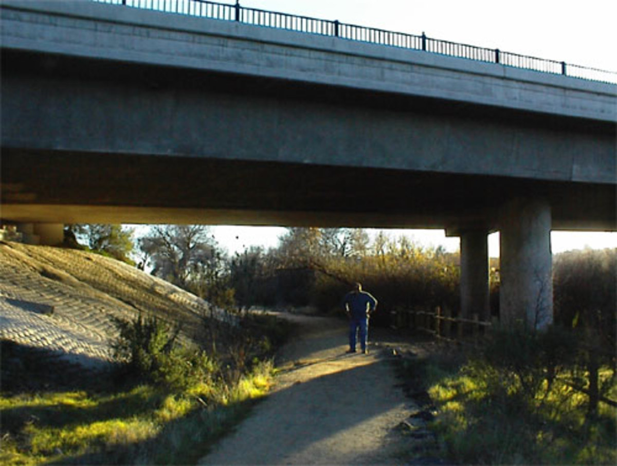 My husband, Kosta, on the trail as it goes under the Niblick Bridge